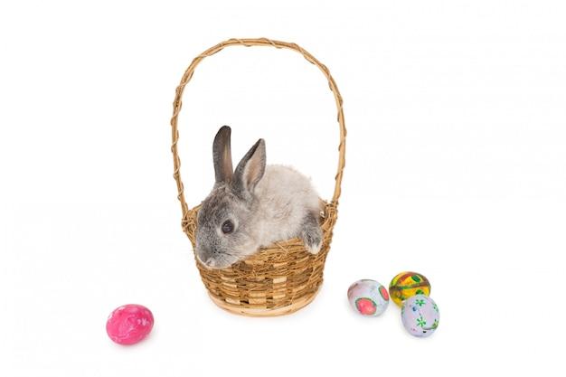 Coelhinho sentado na cesta com ovos de páscoa no fundo branco