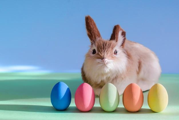 Coelho fofo e ovos de páscoa