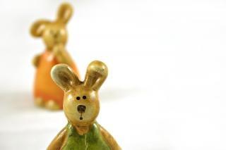 Coelhos de páscoa - um closeup, laranja