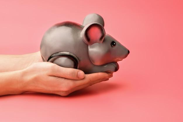 Cofrinho na forma de um rato ou rato cinza em um rosa