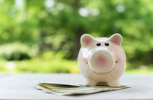 Cofrinho para economizar dinheiro rosa na natureza em uma mesa com notas de dólar