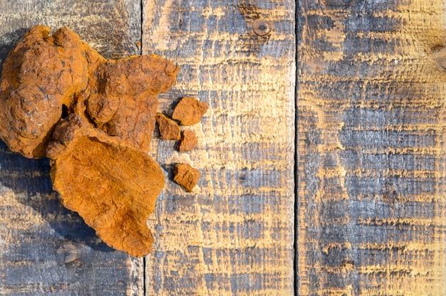 Cogumelo descascado do chaga do vidoeiro selvagem para fabricar chá natural do fungo em uma superfície de madeira