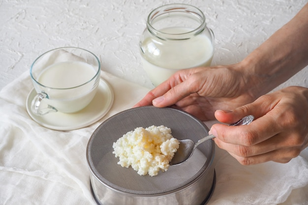 Cogumelo leite tibetano. grãos de kefir de leite caseiro em um filtro de filtro.