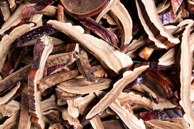 Cogumelo lingzhi seco antes de fazer uma droga
