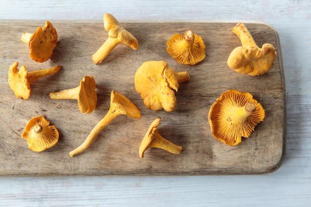Cogumelos cantharellus