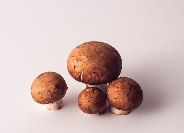 Cogumelos champignon com um close-up de tampa marrom isolado no fundo branco