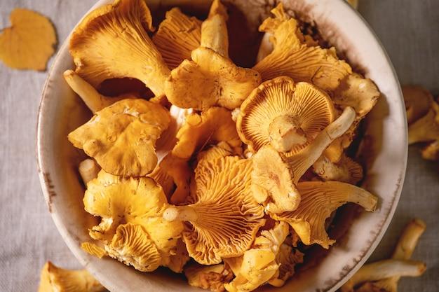 Cogumelos chanterelle floresta