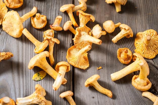 Cogumelos chanterelle