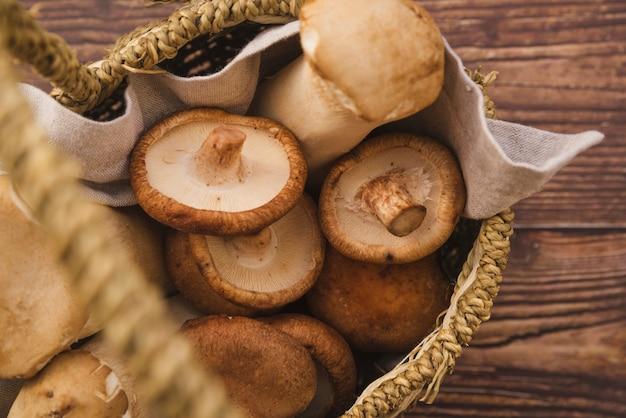 Cogumelos coletados na cesta