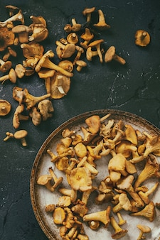 Cogumelos da floresta chanterelle