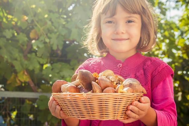 Cogumelos da floresta nas mãos de uma criança. foco seletivo.