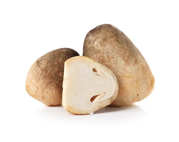 Cogumelos de palha de arroz fresco, volvariel la volvacea em fundo branco