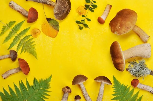 Cogumelos e folhas em fundo amarelo
