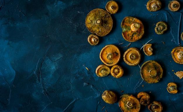 Cogumelos frescos com fundo azul
