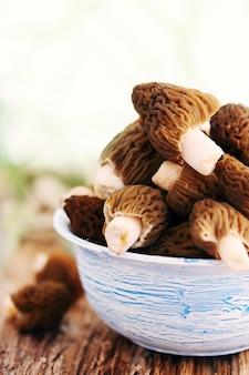 Cogumelos frescos