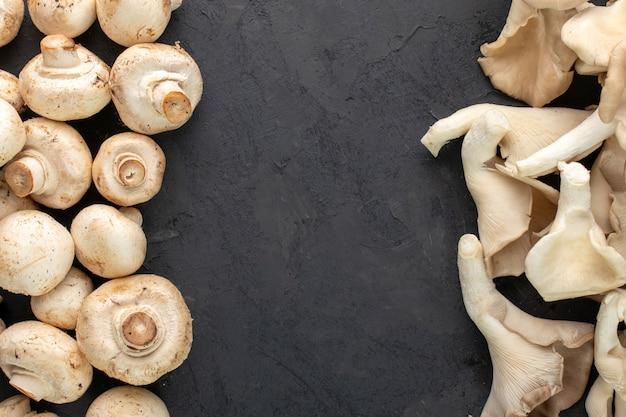 Cogumelos marrons em fundo escuro