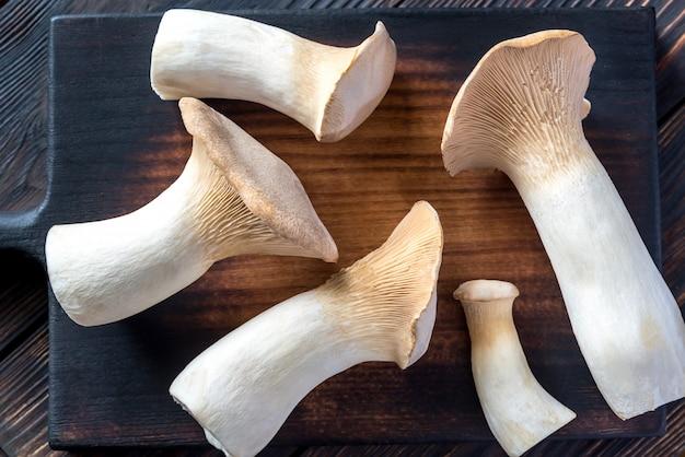 Cogumelos ostra rei