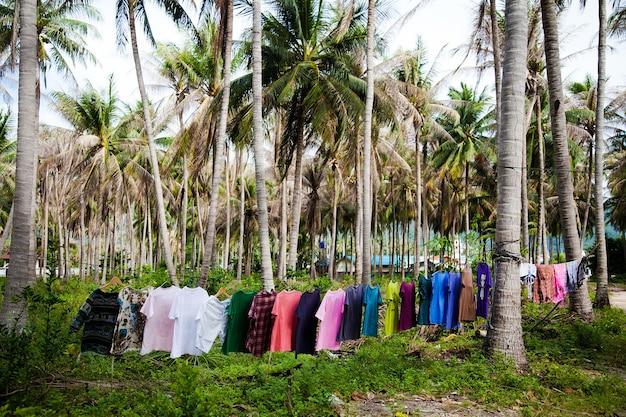 Coisas coloridas lavadas e secas em uma corda entre as palmeiras na selva