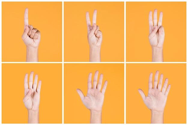 Colagem, de, um, para, cinco, dedos contam, sinais, sobre, amarela, fundo