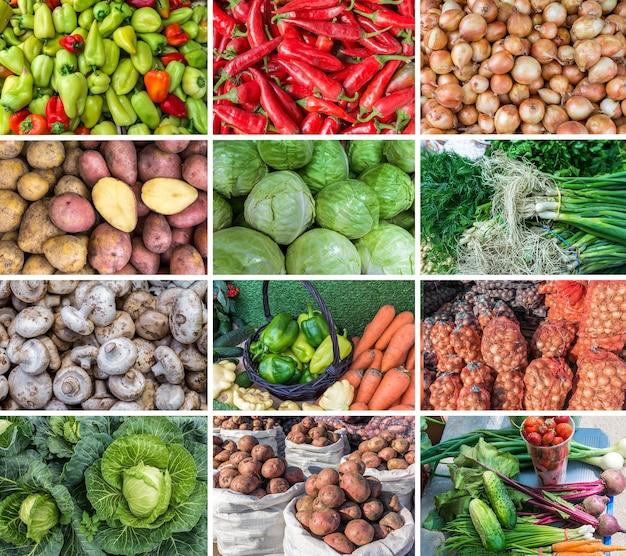 Colagem de vegetais frescos da nova safra o mercado vende cebolas pimentões e outros vegetais