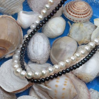 Colares de pérolas brancas e pretas no fundo da concha marinha. foto de close-up