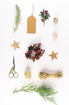 Coleção de bagas, galhos, fios, tesoura e tag