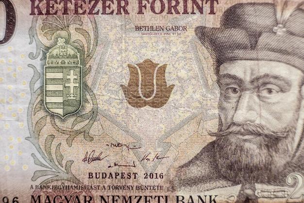 Coleção de dinheiro mundial. fragmentos de dinheiro da hungria