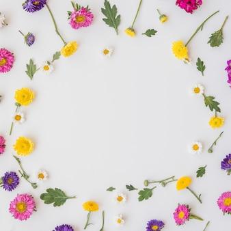 Coleção de flores coloridas