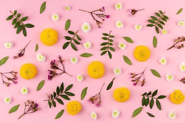 Coleção de flores na mesa