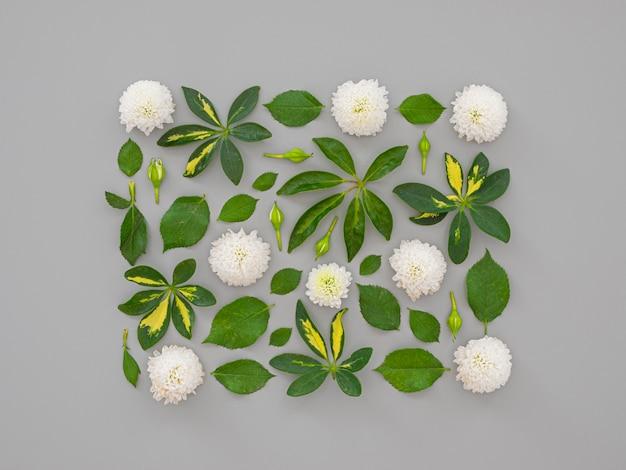 Coleção de flores quadradas