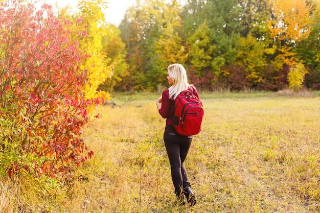Coleção de folhas de outono coloridas bonitas, verde, amarelo, laranja, vermelho