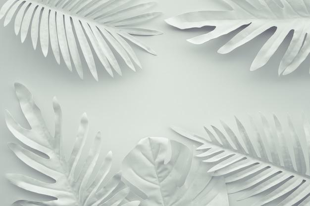 Coleção de folhas tropicais, planta de folha em branco, camada plana