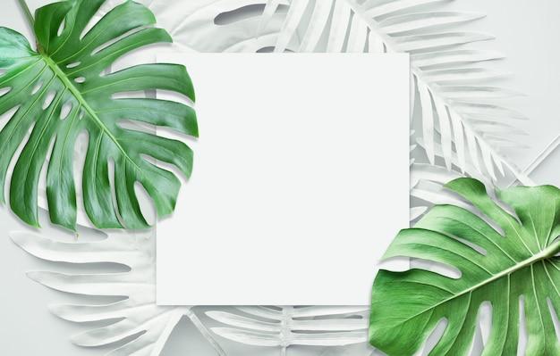 Coleção de folhas tropicais, planta de folhagem na cor branca e verde