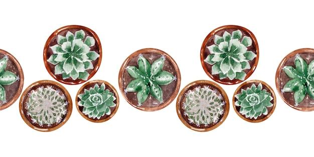 Coleção de fronteira aquarela de cactos em vasos