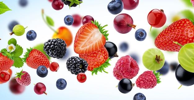 Coleção de frutas frescas