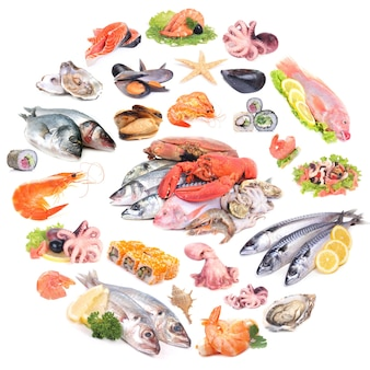 Coleção de frutos do mar