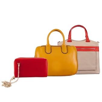 Coleção de moda feminina de bolsas. conjunto com sacos diferentes.