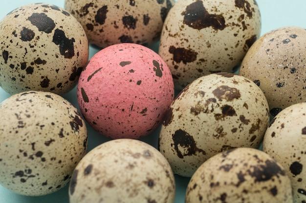 Coleção de ovos de codorna close-up