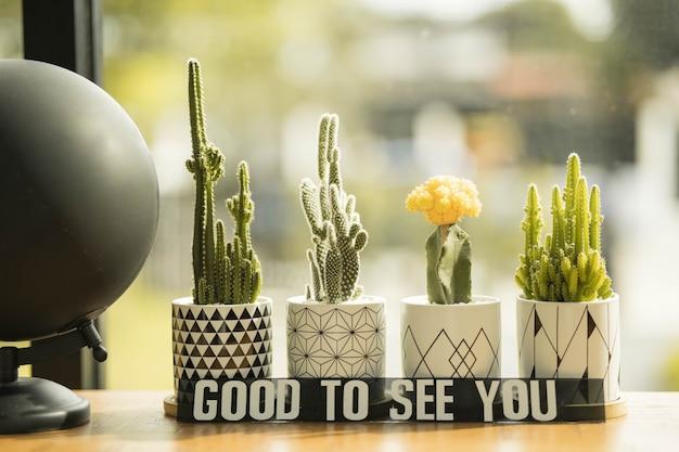 Coleção de suculentas em janela na varanda. conceito de plantar flores em casa, cacto opuntia, planta do deserto, planta espinhosa.
