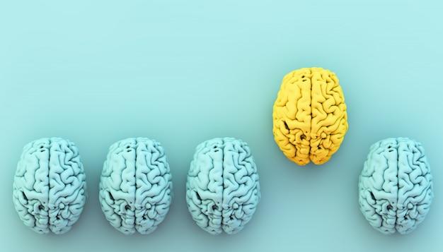 Coleção do cérebro com uma destacada