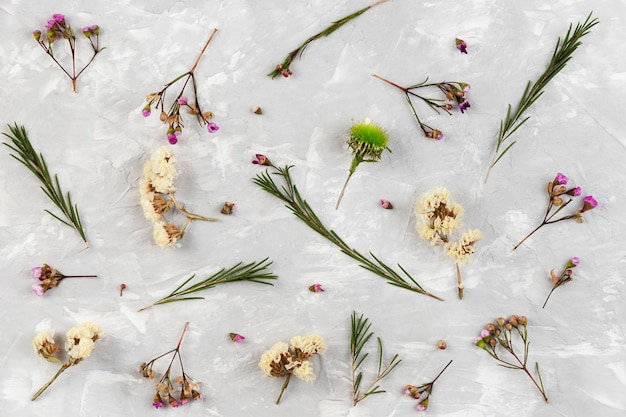 Coleção floral vista de cima