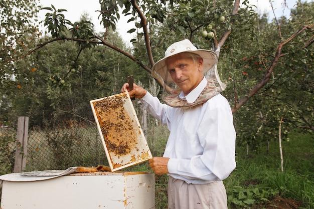 Colete o mel: close-up do favo de mel. trabalhos de apicultura: abelhas, favos de mel, mel