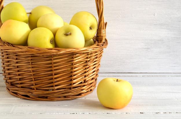 Colha maçãs maduras na cesta na grama.