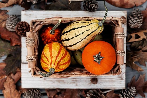 Colheita de abóbora em caixa rústica com folhas de outono em fundo de madeira, conceito de temporada de férias