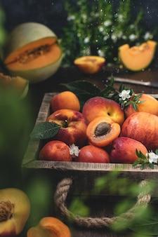Colheita de frutas de verão rústico, caixa com pêssegos e damascos, melão laranja