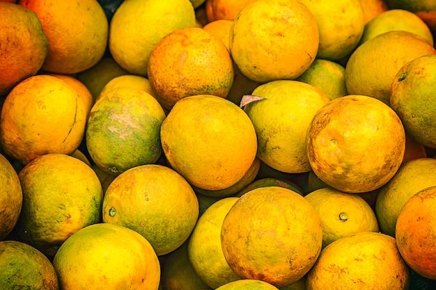 Colheita de laranja no brasil no inverno em um dia nublado
