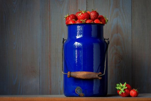 Colheita de morangos frescos