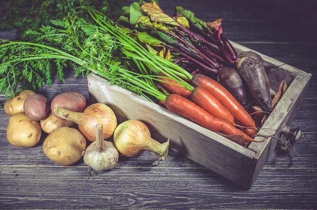 Colheita de outono. cenouras frescas, beterraba, cebolas, alho e batatas em uma madeira. produtos de agricultores.