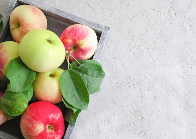 Colheita de outono com maçãs verde-vermelhas em uma caixa de madeira