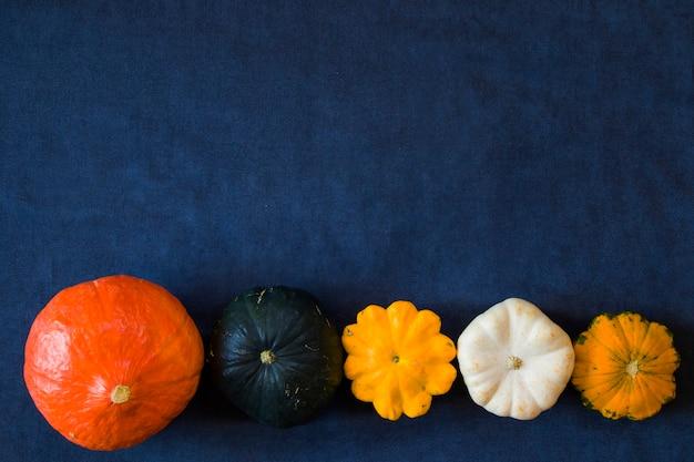 Colheita de outono e outono na mesa azul